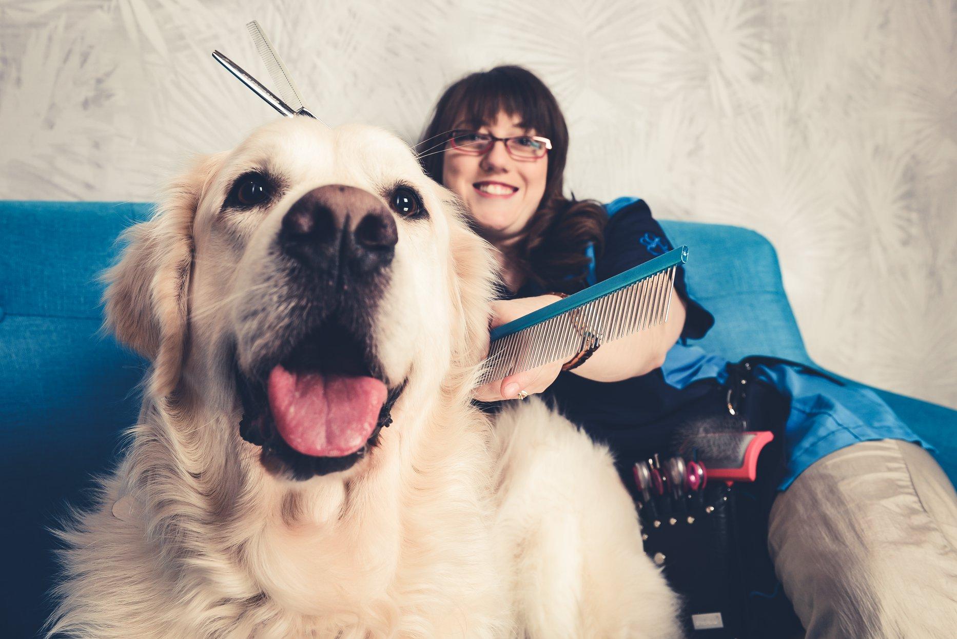 Marias Hundesalon